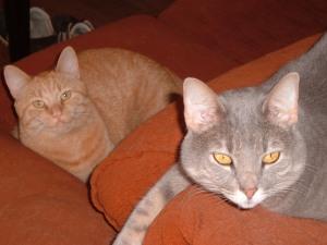 Cecil and Geraldine